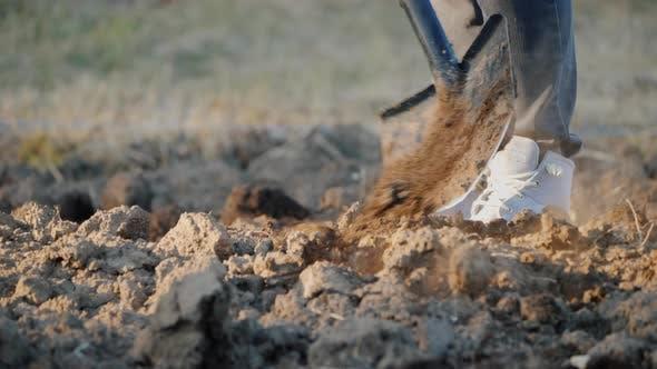 Thumbnail for The Farmer Digs Up Land in His Garden. Enjoys Shovel,