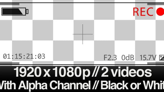 Thumbnail for Series of 2 Video Camera Display Viewfinder