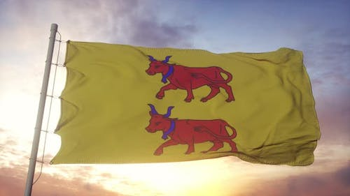 Bearn flag, France, waving in the wind, sky and sun background