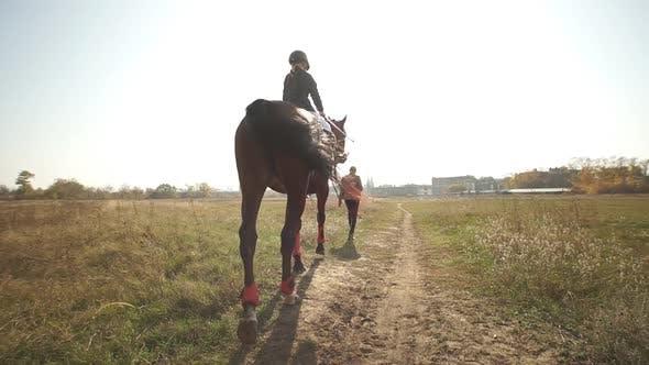 Little Girl Riding Through Meadow on Purebred Brown Horse. Jockey Kid Horseback Walking Outdoor