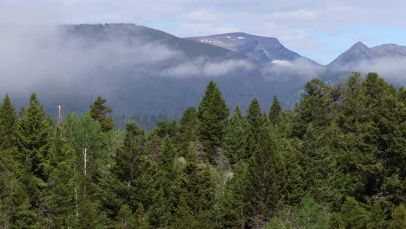 Thumbnail for Panning view of forest against mountains