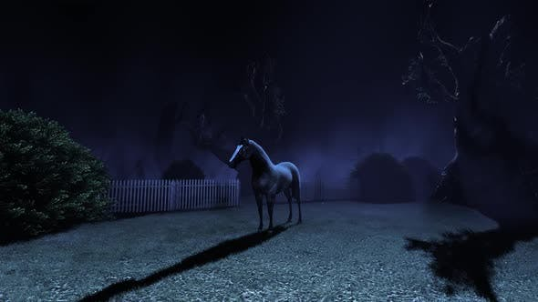 Thumbnail for Horse of Darkness