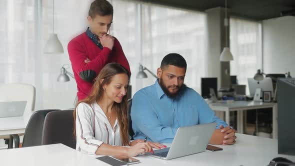 Thumbnail for Cheerful Business Team Working with Laptop in Modern Office