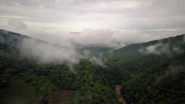 Thumbnail for Aerial View of Lush Green Rain Forest Mountain 03