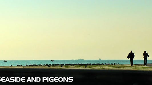 Thumbnail for Seaside and Pigeons