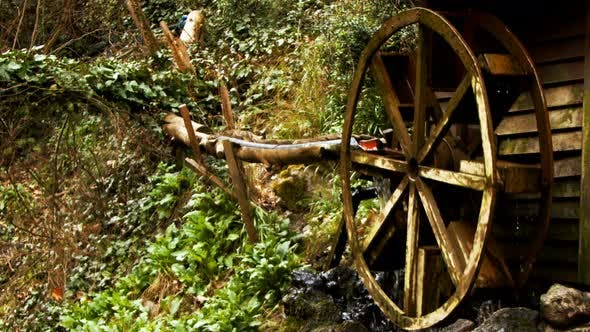 Water Mill In Green Nature 1