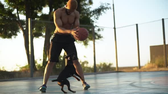 Tall Strong Basketball Player Joyfully Teasing Dog Playing with Ball on Court in Morning Slow Motion