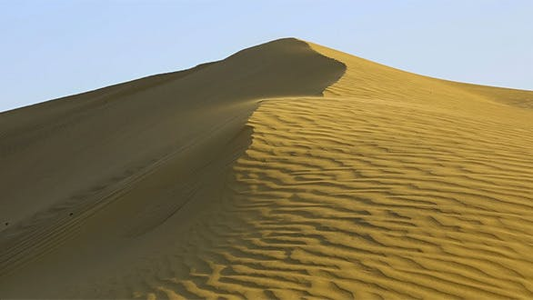 Cover Image for Sand Dune