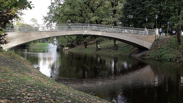 Thumbnail for Bridge In City Park