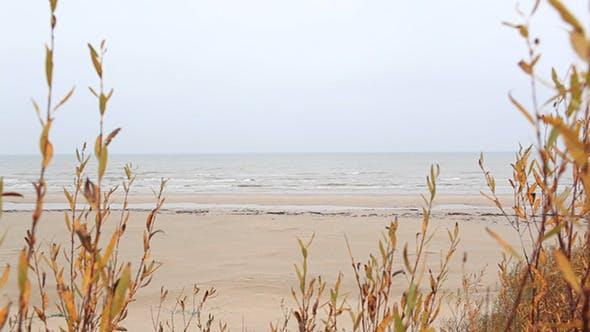 Thumbnail for Baltic Sea