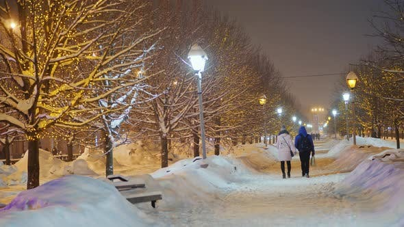 Thumbnail for Snow Covered Alley and Trees Covered with Snow. Winter in the City