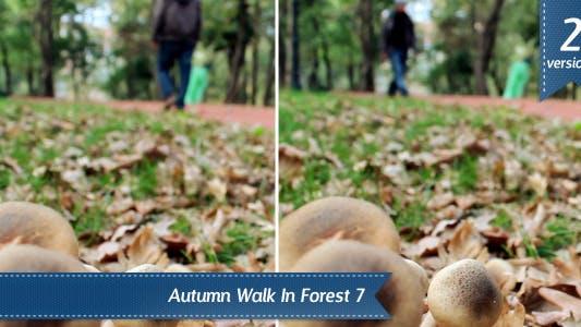 Cover Image for Mushroom