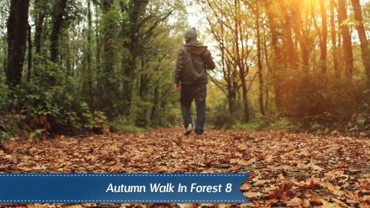 Thumbnail for Autumn