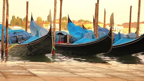 Thumbnail for Sunset in Venice