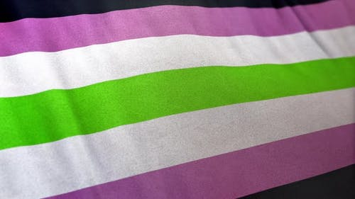 Agender Girl Pride Flag Loop
