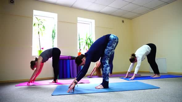 Thumbnail for Trainer Conduct Familiarization Yoga Training for Beginners