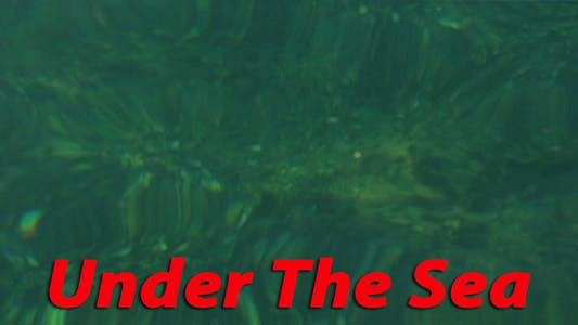 Thumbnail for Under The Sea