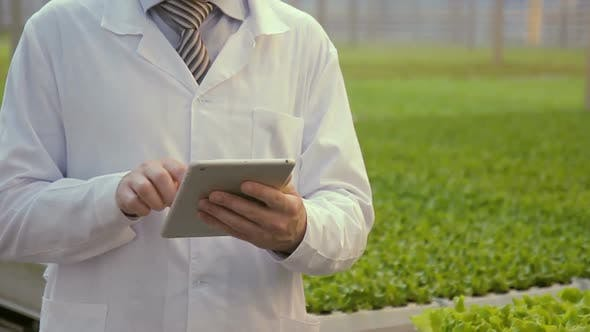 Thumbnail for Laboratory Assistant Stands with Tablet in Hands in Premise of Agro-industrial Complex