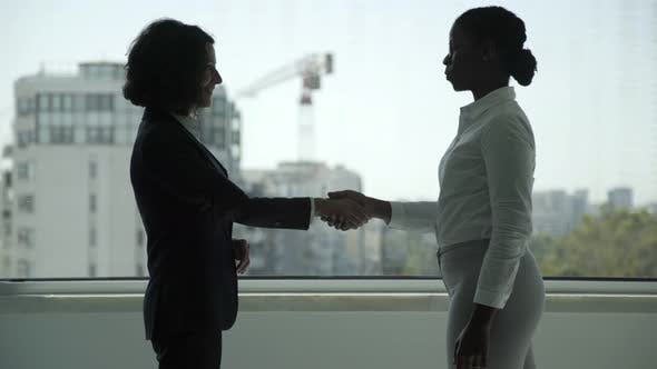Cover Image for Smiling Businesswomen Shaking Hands