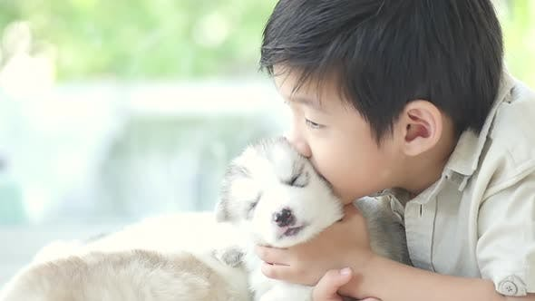 Cute Asian Child Kissing Siberian Husky Puppy
