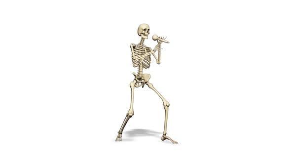 3D Skeleton Fun Rap auf Weiß