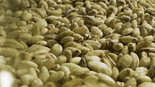 Thumbnail for Close up of unroasted coffee beans background