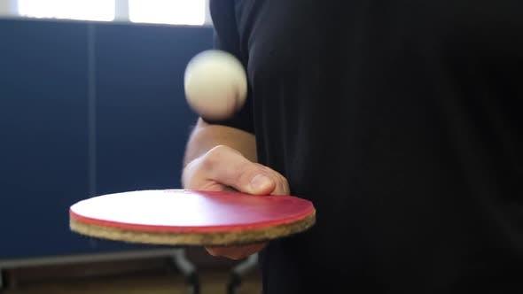Schwarzer Tischtennisschläger und Ball in den Händen der Frauen schließen