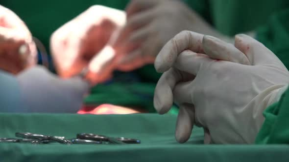 Thumbnail for Surgical Suture Or Stitches
