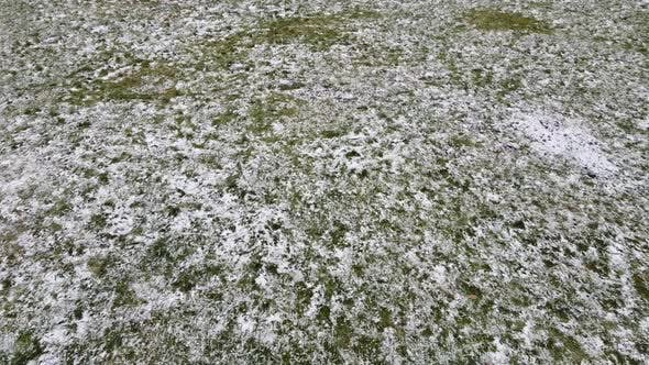 Thumbnail for Snow covered grass.