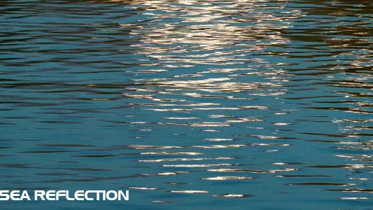 Thumbnail for Sea Reflection