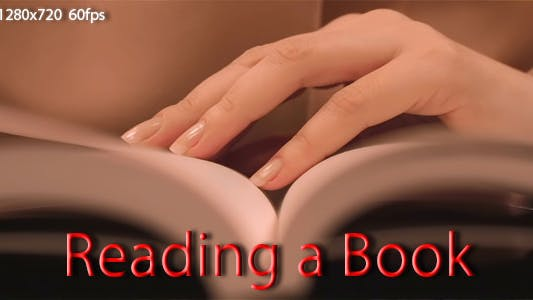 Thumbnail for Reading a Book FULL HD
