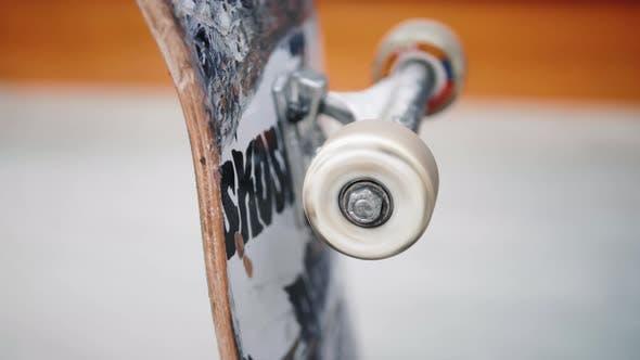 Close Up Macro Shot of Skate Wheel Skateboard Extreme Sport