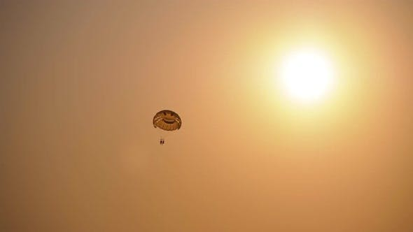 Parasailing at Sunset. Parachute Flying on Rope Behind the Boat. View Through the Silhouette of Palm