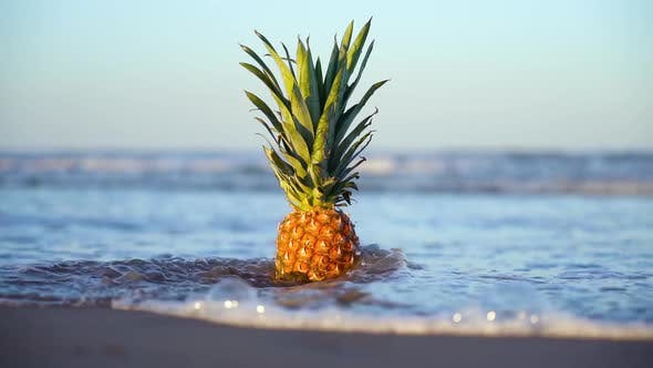 Slow Motion of the Water at the Beach and a Pineapple