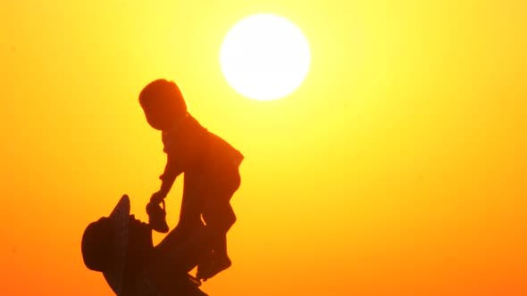 Cover Image for Silhouette of a Happy Mother on Vacation Holding His Daughter in the Air on the Beach During Sunset
