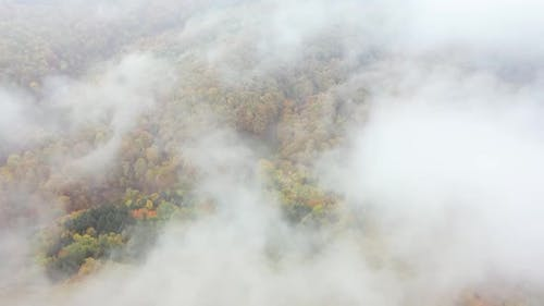 Aerial Drone Flying Through Clouds Sky Over Autumn Forest