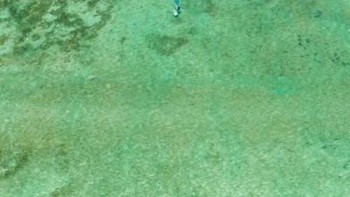 Windsurfer in the Blue Lagoon
