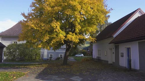 Traditional Buildings Of The Small Austrian Village