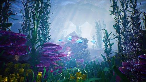 Ocean Underwater Scene HD