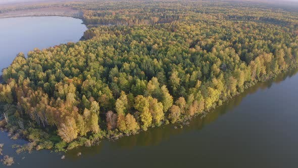 Aerial Footage of a Surface of the Lake Surrounded By Colorful Forest in Autumn