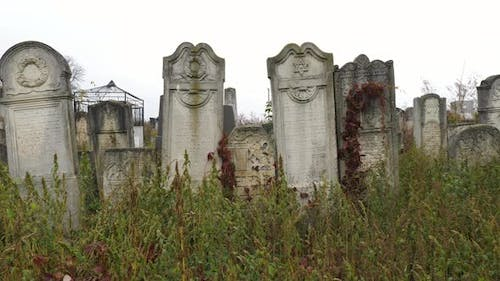 Jewish tombstones in a cemetery
