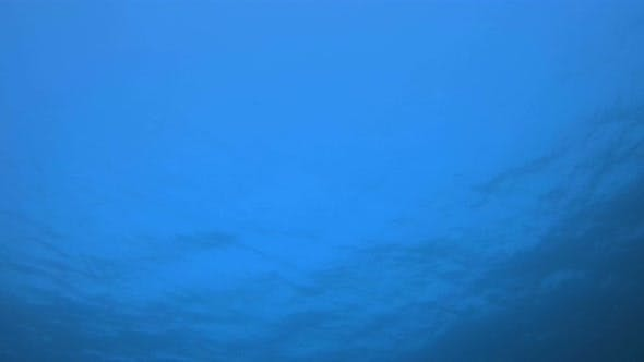 Thumbnail for Underwater Blue Background