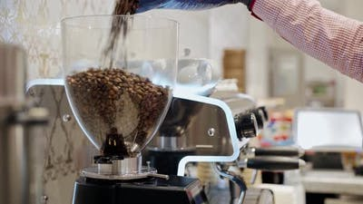 Barista Pouring Coffee Beans Into a Coffee Grinder Close Up