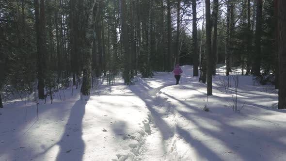 Cover Image for Woman Walking in Winter Forest