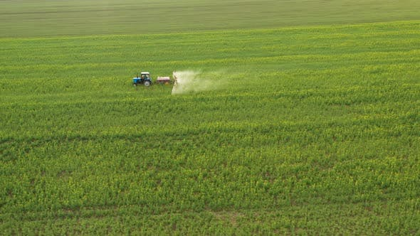 Thumbnail for Aerial View of Tractor Sprays Fertilizer on Agricultural Plants on the Rapeseed Field
