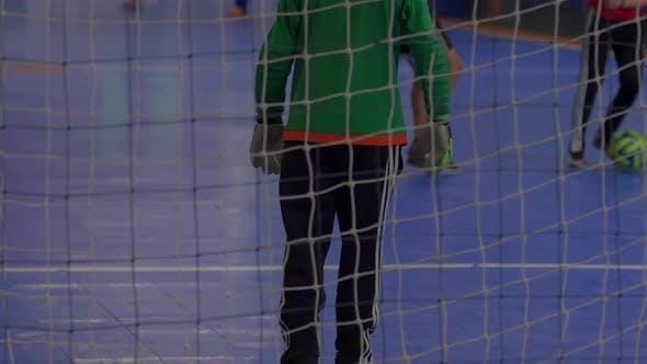 Thumbnail for A goalie for futsal youth soccer football.