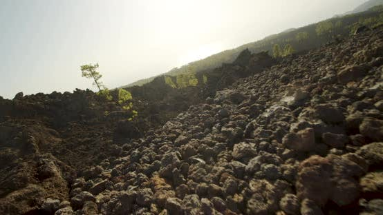 Thumbnail for Volcanic Rock In Sunlit Tenerife