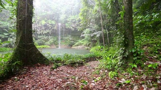 Thumbnail for Waterfall in Borneo Rainforest