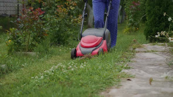 Thumbnail for Lawn Mower in the Garden