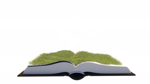 Open Book With Growing Grass